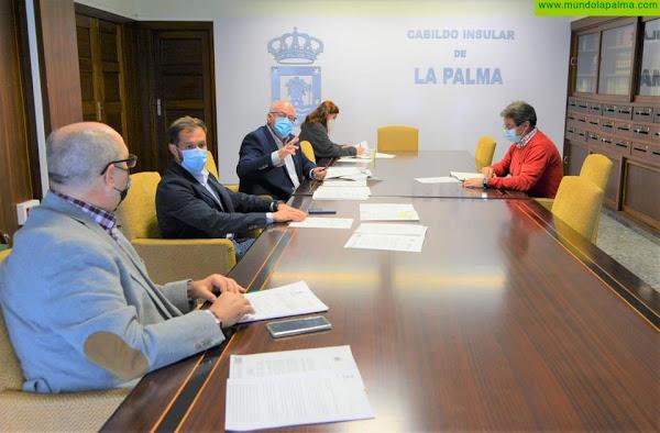 El Cabildo de La Palma reclama al Gobierno canario medidas de apoyo a las entidades del tercer sector