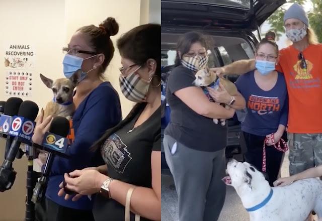 15 расплакавшихся хозяев, которые всё-таки встретились со своими собаками спустя годы после пропажи