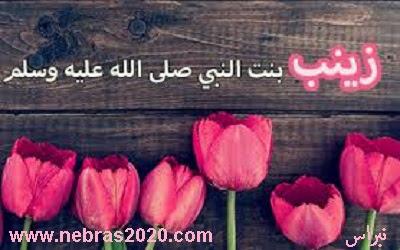 السيدة زينب بنت رسول الله (ص)