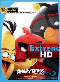 Angry Birds la película 2016 [1080p] Latino [GoogleDrive] DizonHD