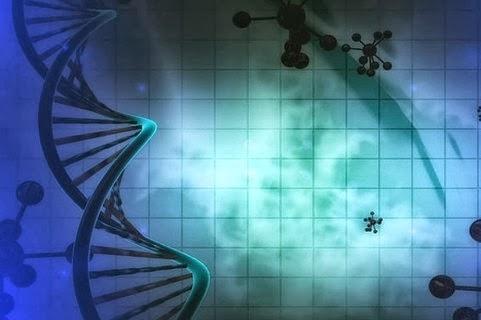 何が遺伝してハゲの原因?