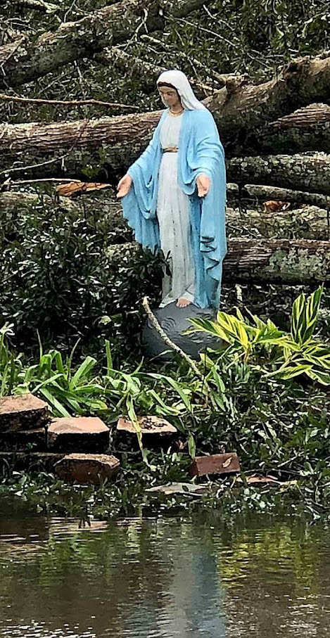O furacão Ida nada pode. Entre as árvores caidas, em Grayville, Louisiana, 2021-08-29