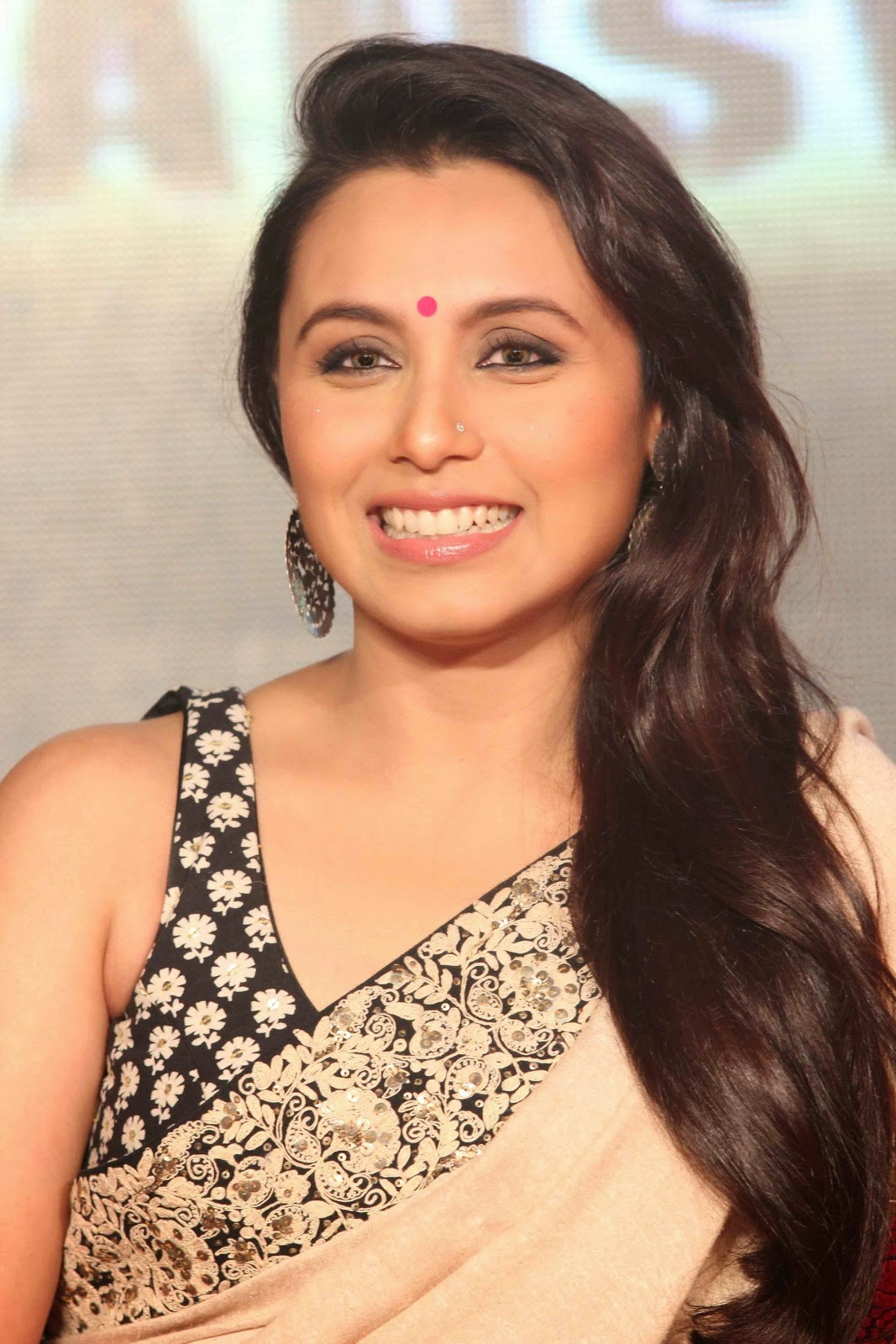 Rani Mukherjee Hot Sexy Pose Images In Saree - Celebrity Images-2513