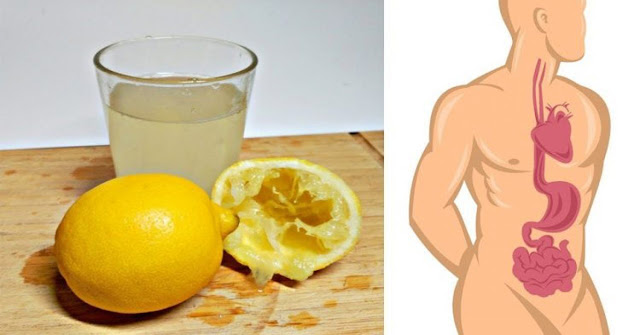 10 Things About Lemon