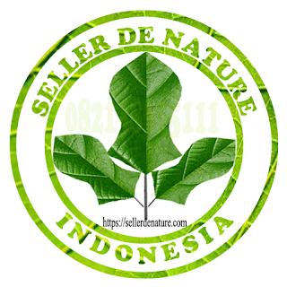 Pt-de-nature-Indonesia-terletak-di-kabupaten-Cilacap,-Jawa-Tengah