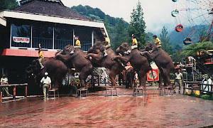 10 Tempat Wisata Rekomendasi Yang Ada di Lampung Timur