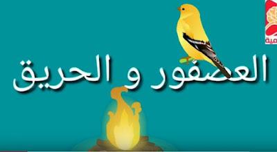 الحكاية 10 العصفور و الحريق المفيد في اللغة العربية المستوى الأول