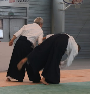 proyeccion aikido