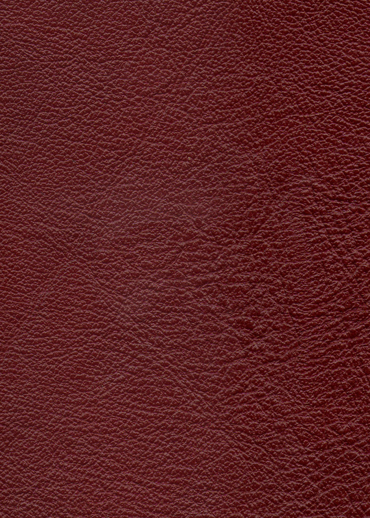 sienna sofa broyhill emily blue couro para revestimento e estofamento - cores dirani 2012 ...