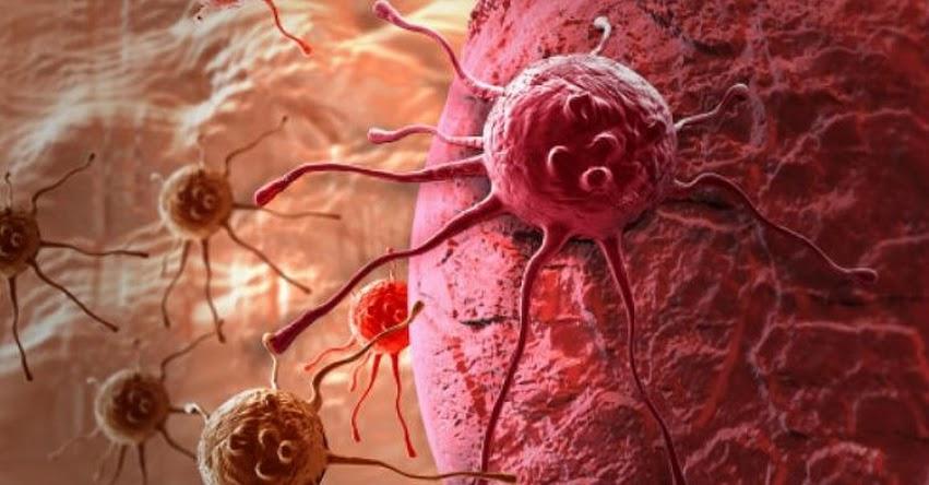 Sepa si es contagioso el cáncer
