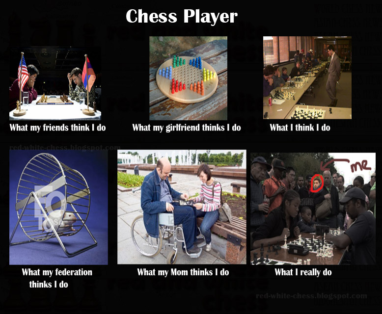 Red And White Chess Top 10 Funniest Chess Meme