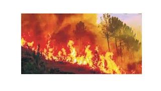 Fire at Covid ICU ward in Nagpur hospital leaves three dead