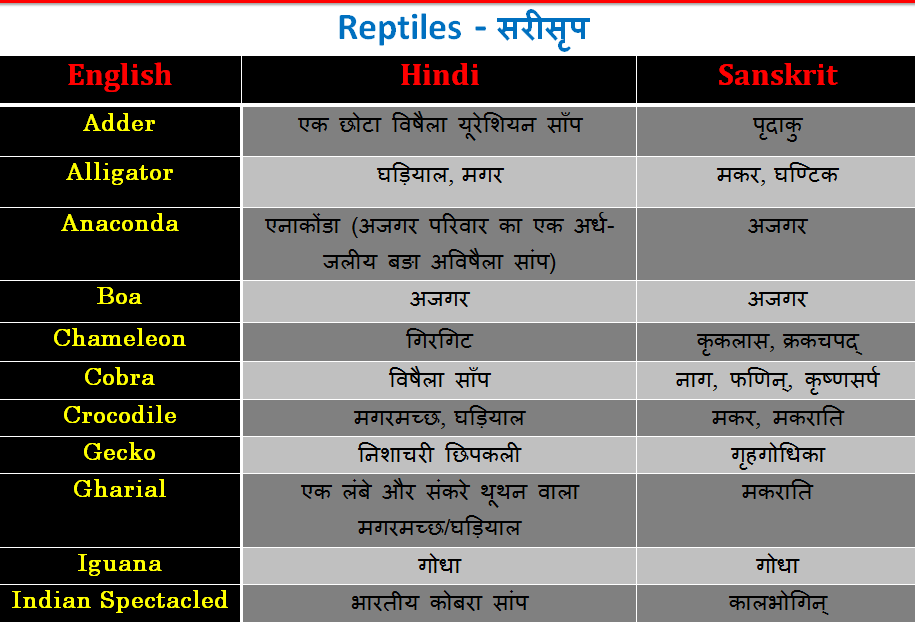 Reptiles name List and Table