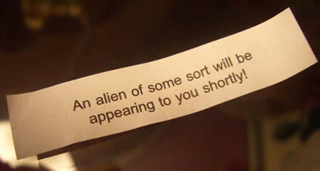20 Funny Fortune Cookie Messages | Just Have Fun, Enjoy Life!