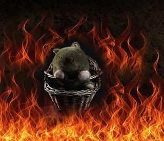 Shane in a Hellish Hand-Basket
