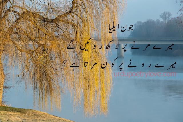 Urdu Poetry | Jaun Elia | 15 Best Poetry Images