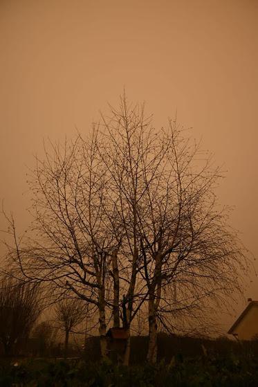 Il cielo della Francia si tinge di giallo grazie alla sabbia del Sahara, attesa anche in Italia.