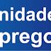 VAGA DE EMPREGO EM SÃO SEBASTIÃO DA AMOREIRA