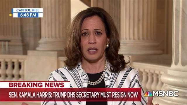 Kamala Harris Blames American Racism for Failed Campaign