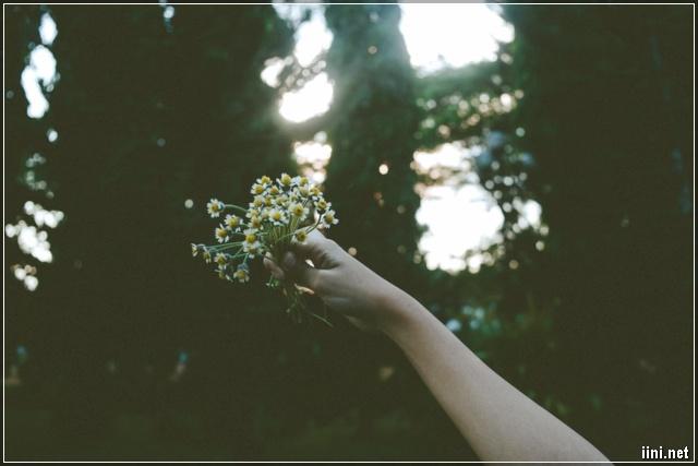 cô gái cầm những bông hoa đưa lên