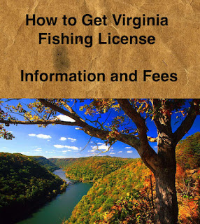 How to Get Virginia Fishing License & Fees