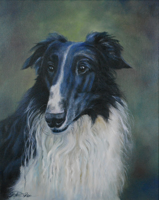 Russian Wolfhound, also known as Borzoi