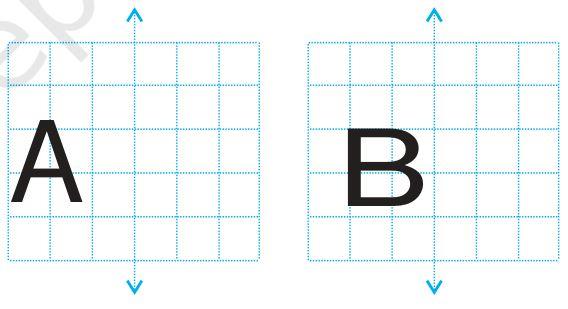 Exercise 13.3 Question 3 Class 6 Maths