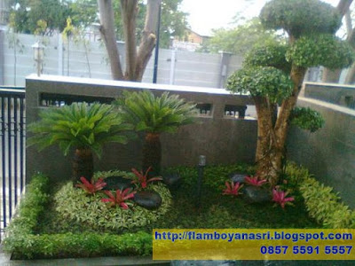 Tukang taman Surabaya Taman Minimalis dengan Pakis