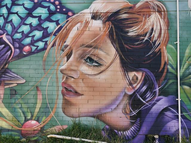 Katoomba Street Art   Scott Nagy & Krimsone