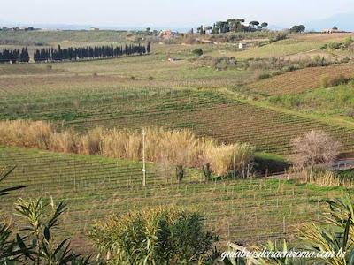 Castelli, zona vulcanica com vinhedos
