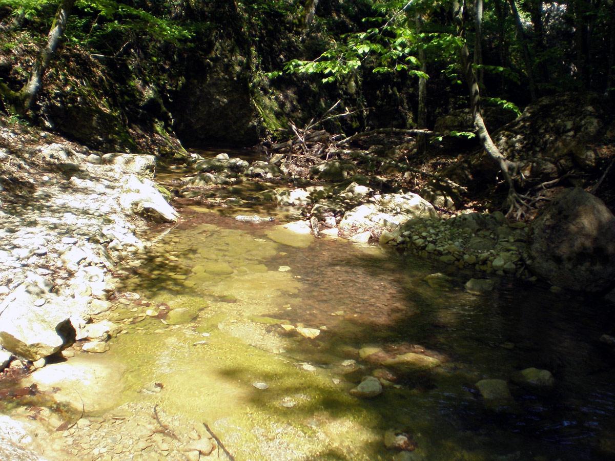 Речка Кучук-Карасу в Крыму