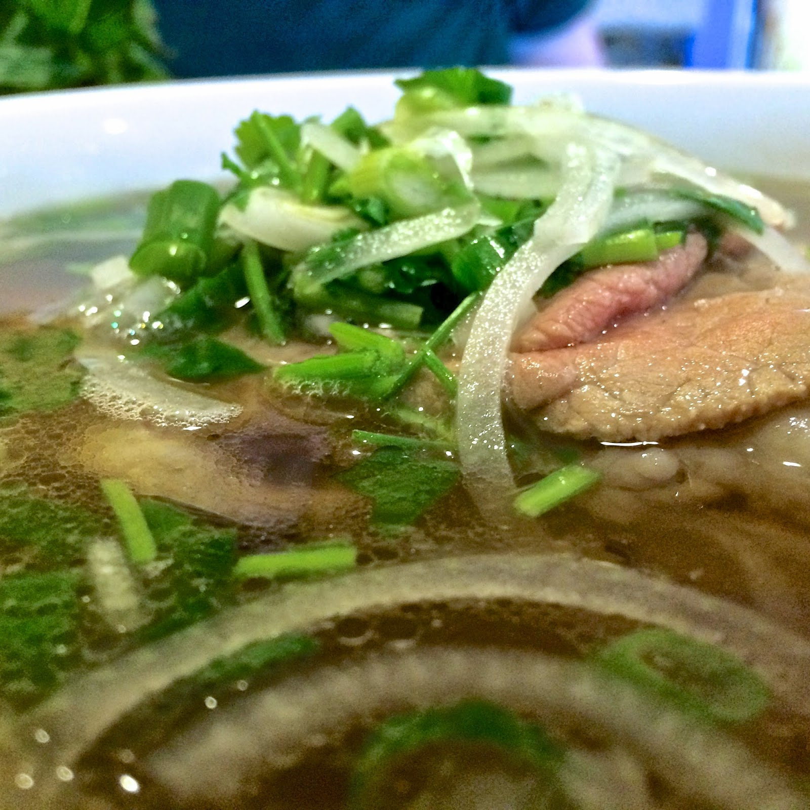 Viet Garden's Pho Dac Biet: Eye Round Steak, Well-Done Flank, Fat Brisket, Soft Tendon, & Meatballs $7.99