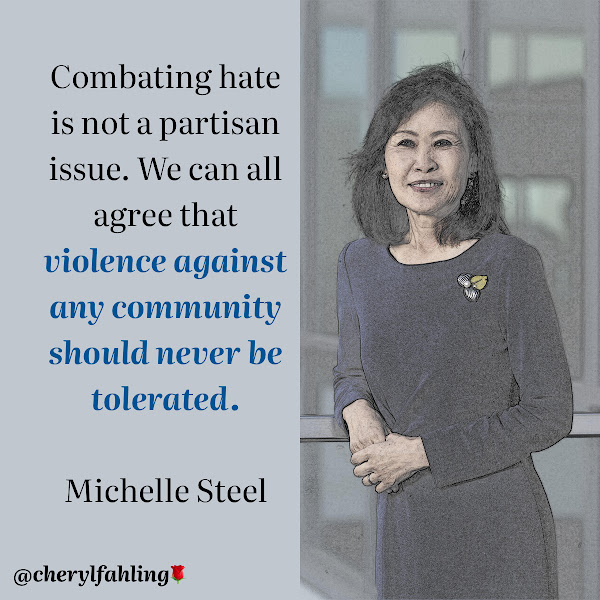 Combating hate is not a partisan issue. We can all agree that violence against any community should never be tolerated. — Rep. Michelle Steel