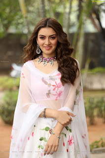 Hansika Motwani at Tenali Ramakrishna Ba Bl Press Meet