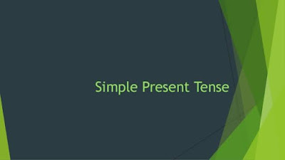 Contoh Penggunaan Like dalam Simple Present Tense