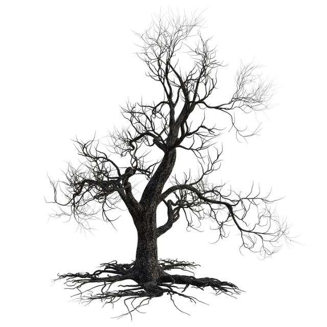 A mon arbre mort