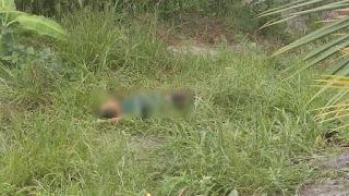Agricultor é morto a tiros e facadas no interior da Paraíba