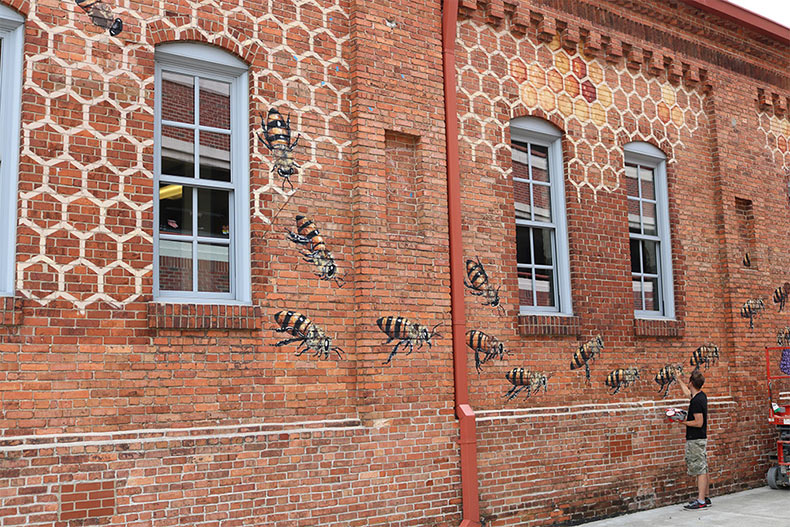 Por el bien de la colmena: El artista Mateo Willey recorre el mundo para pintar 50.000 abejas