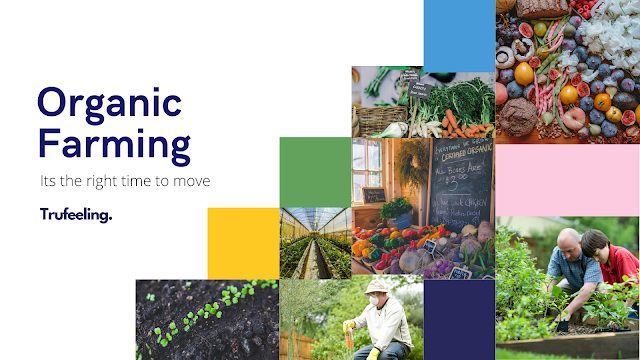 Is this right time to move towards Organic Farming ?