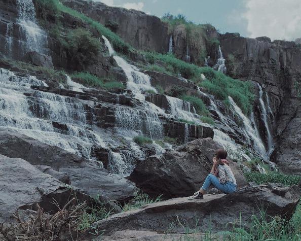 Đồi chè Cầu Đất – Trại Mát Đà Lạt