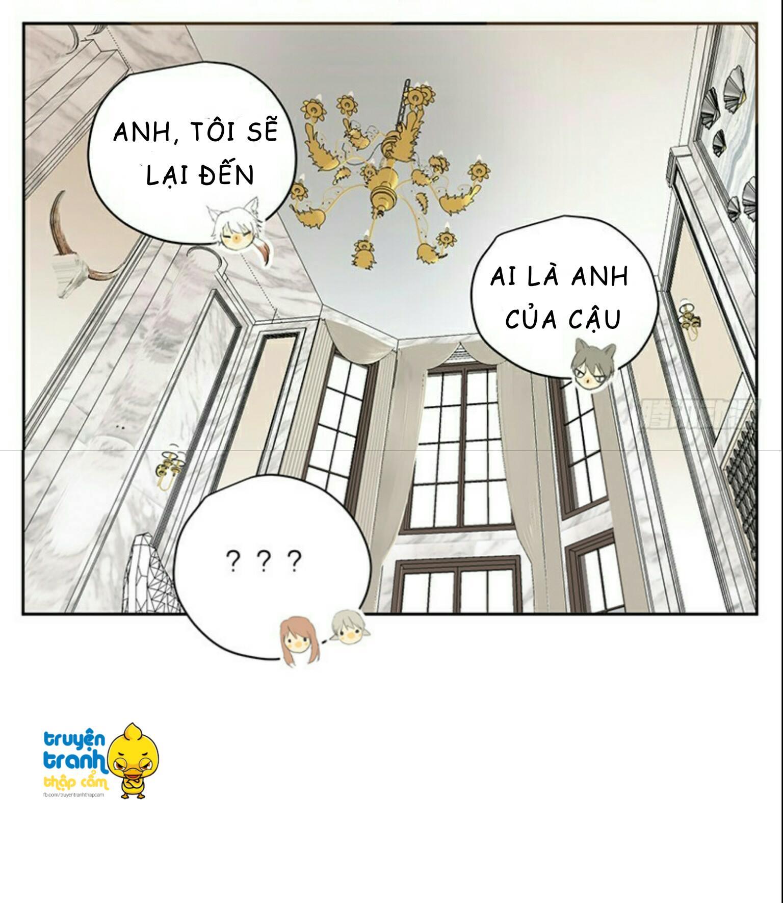 Cứu mạng ! Loài mèo thống trị thế giới rồi ! chap 32 - Trang 16