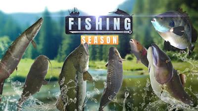 FISHING SEASON : RIVER TO OCEAN (MOD, FREE SHOPPING) APK DOWNLOAD