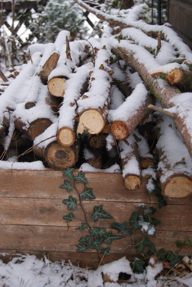 Kiste mit Holzstämmen im Schnee
