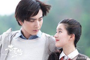 Download Drama China Prodigy Healer Subtitle Indonesia