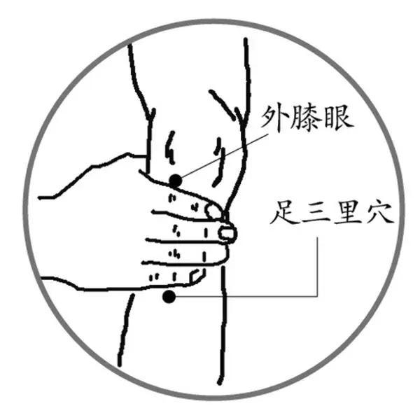 常按這5穴,補足精力,護肝調脾胃!(改善疲勞)