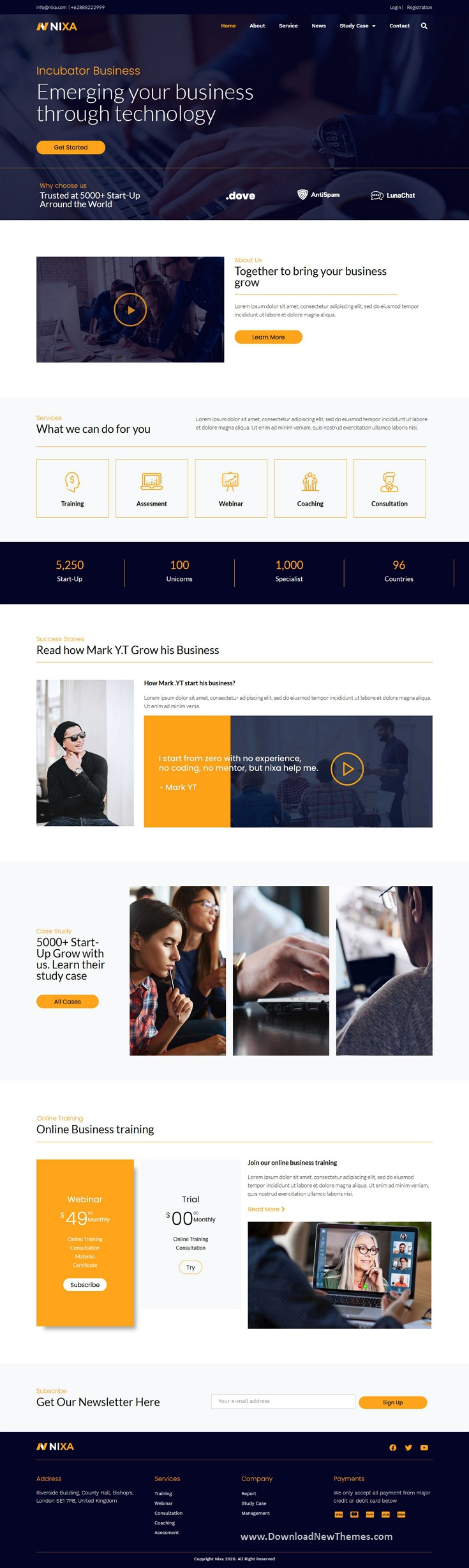 Business & Services Elementor Template Kit