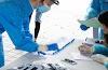 Το πρόγραμμα διενέργειας rapid test στην Ημαθία από κλιμάκια του ΕΟΔΥ (27/9 - 3/10)