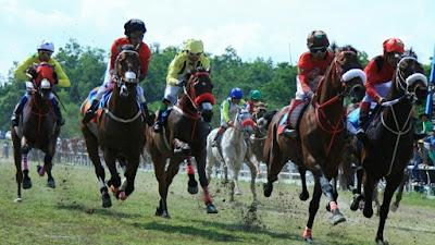 Kuda Punto Dewo Taput Bersaing Dengan 4 Kuda Pemula Sumbar