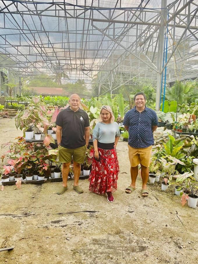 Plantita Grace Bondad Nicolas' day with Arid & Aroid Founders