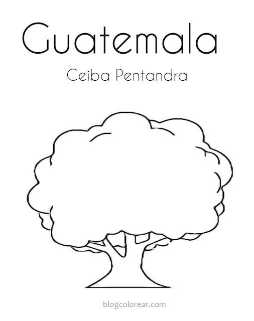 dibujo para colorear de Ceiba Pentandra Guatemala